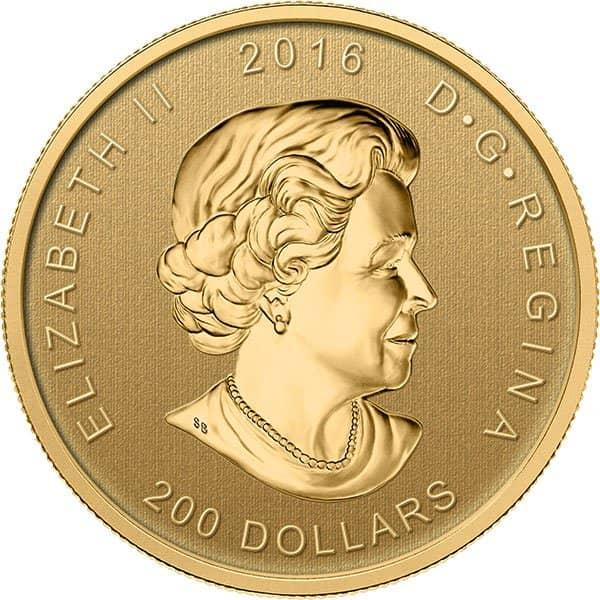 99999 gold coin