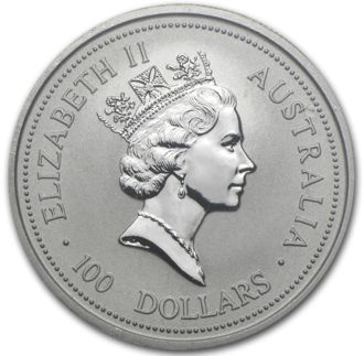 Platinum Australian Koala