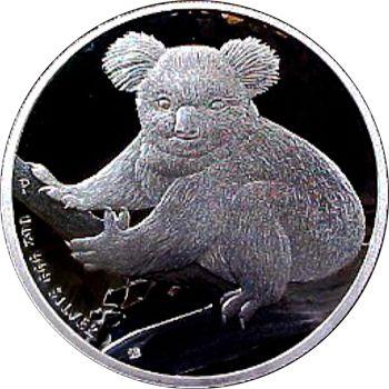 2009 silver koala