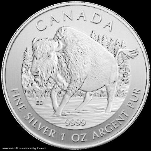 silver bison