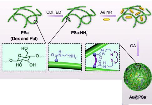 Polysaccharide - Gold Nanoparticle Generation