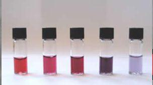 colloidal gold nanoparticles