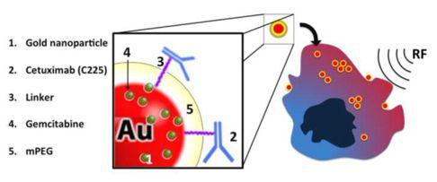 gold nano-particle radiowave