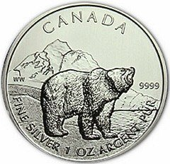 silver grizzly